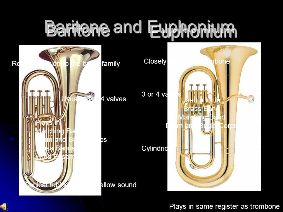 Baritone and Euphonium