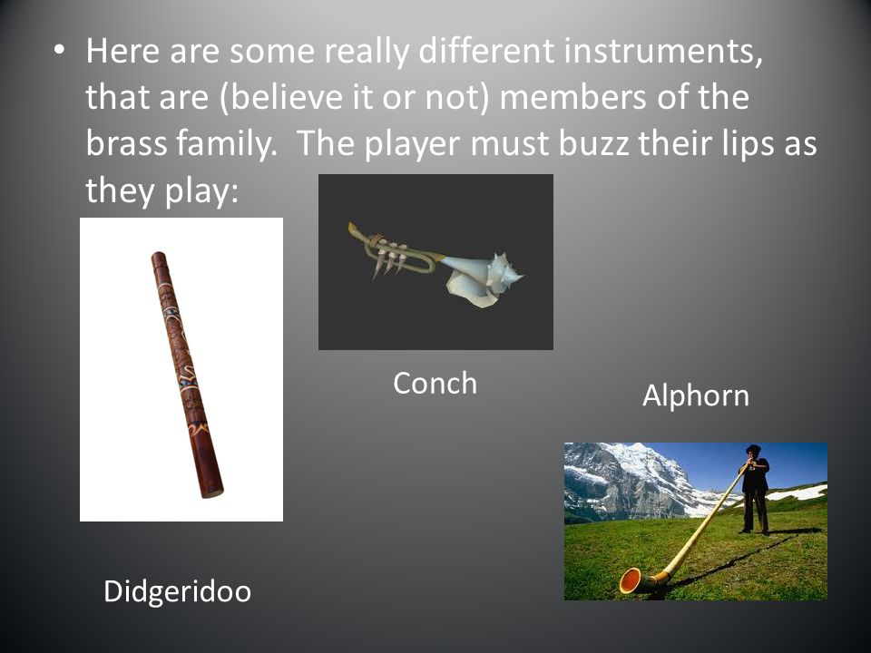 Here are some really different instruments, that are (believe it or not) members of the brass family. The player must buzz their lips as they play: