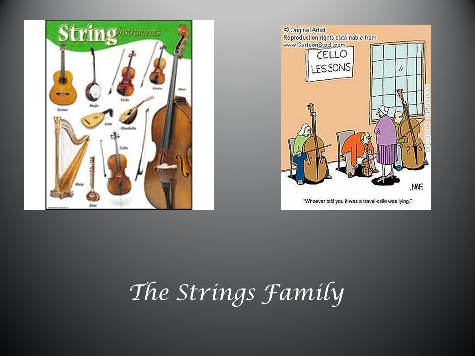 The Strings Family