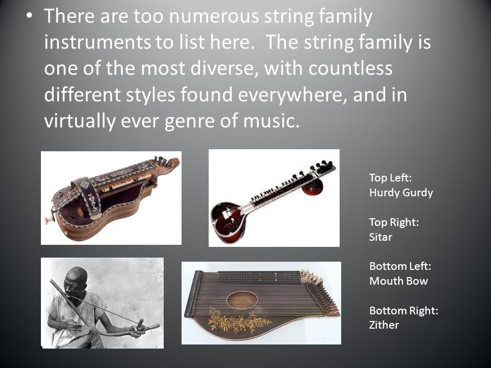 There are too numerous string family instruments to list here