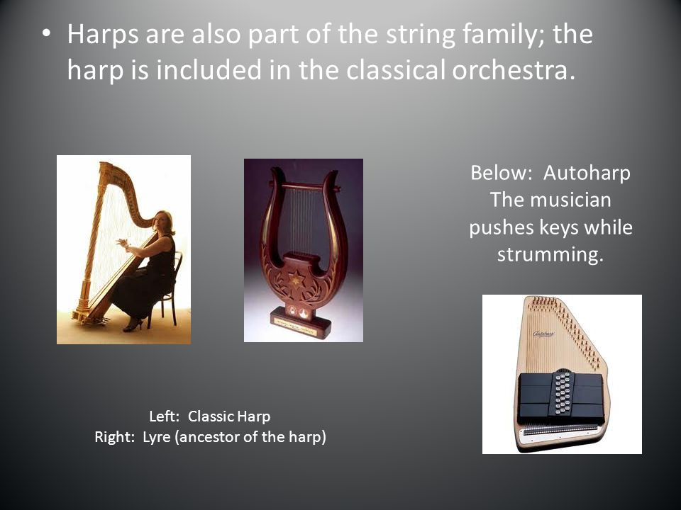 Harps are also part of the string family; the harp is included in the classical orchestra.