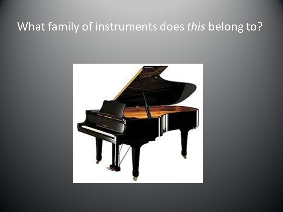 What family of instruments does this belong to