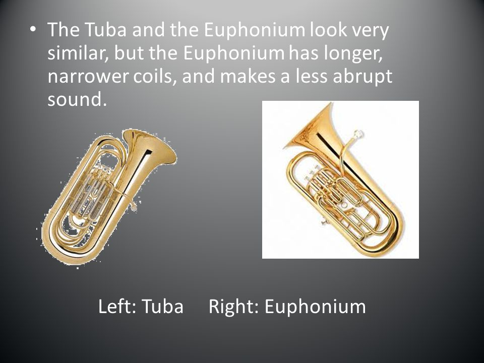 Left: Tuba Right: Euphonium