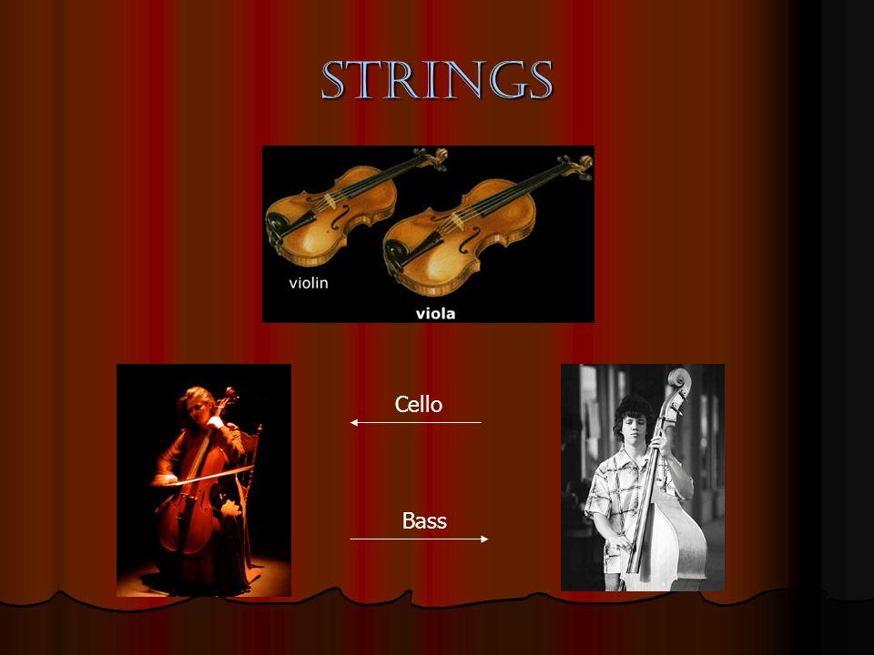strings Cello Bass