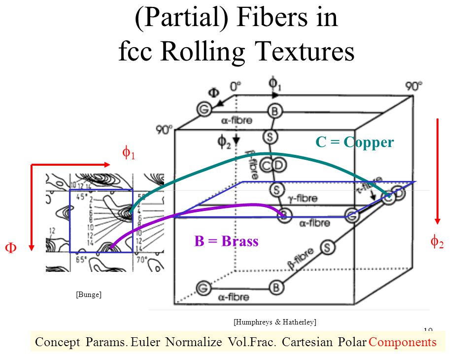 (Partial) Fibers in fcc Rolling Textures