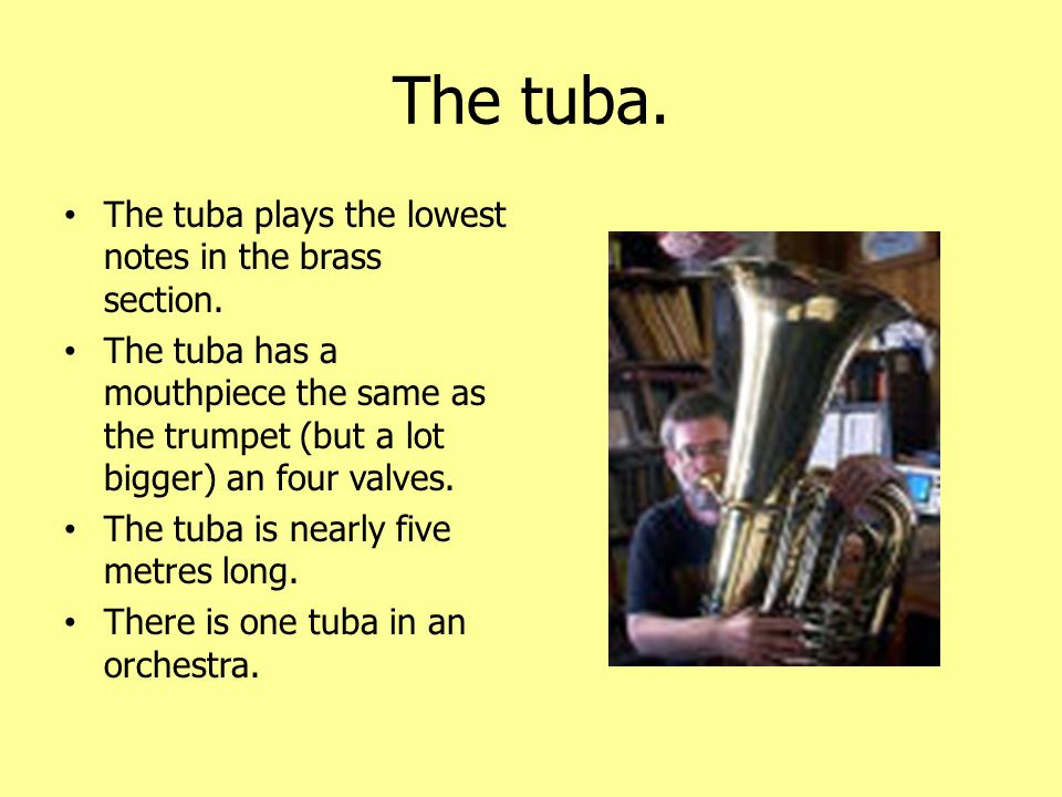 The tuba. The tuba plays the lowest notes in the brass section.