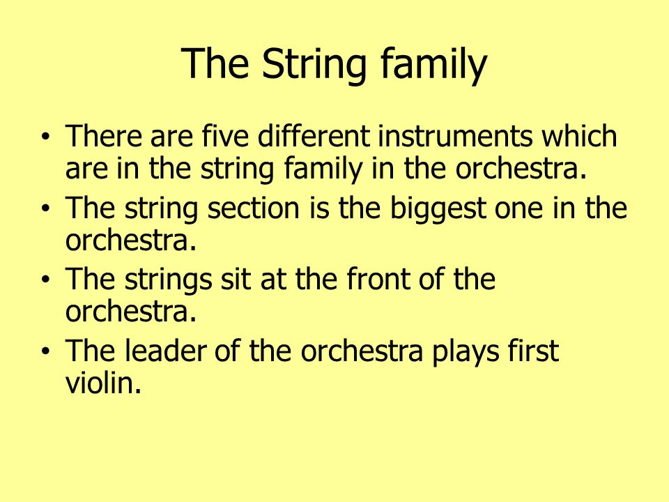 The String family There are five different instruments which are in the string family in the orchestra.