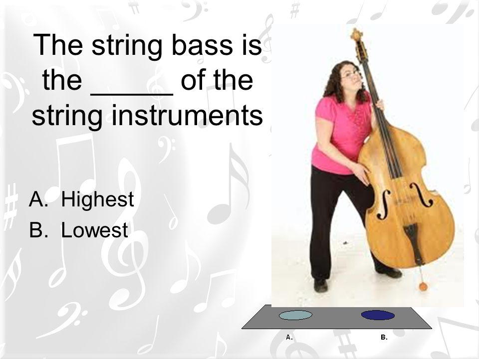 The string bass is the _____ of the string instruments