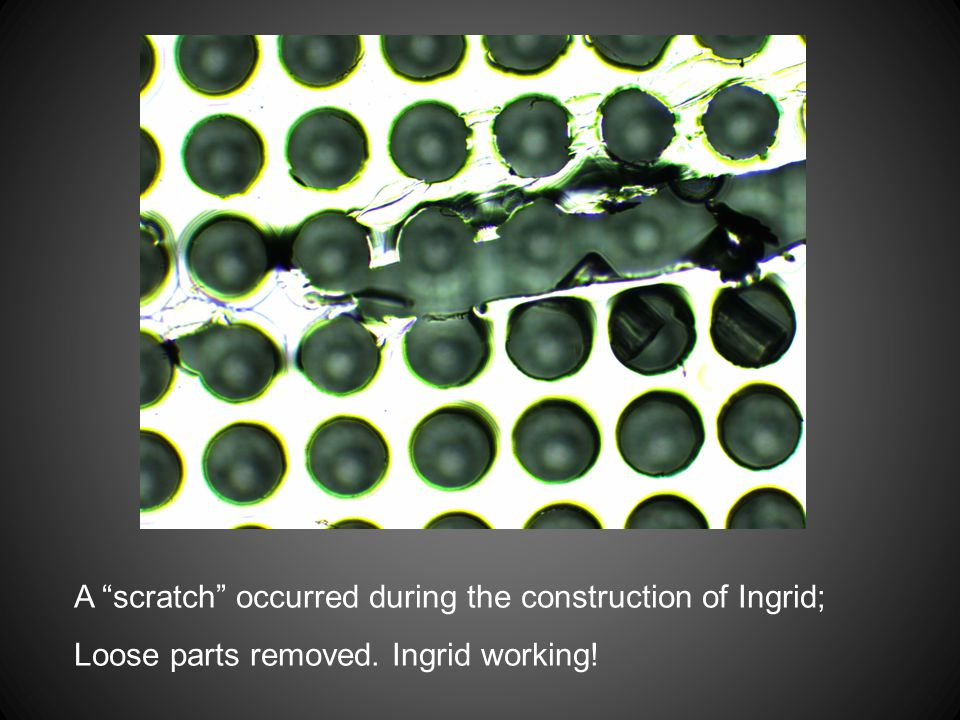 A scratch occurred during the construction of Ingrid;