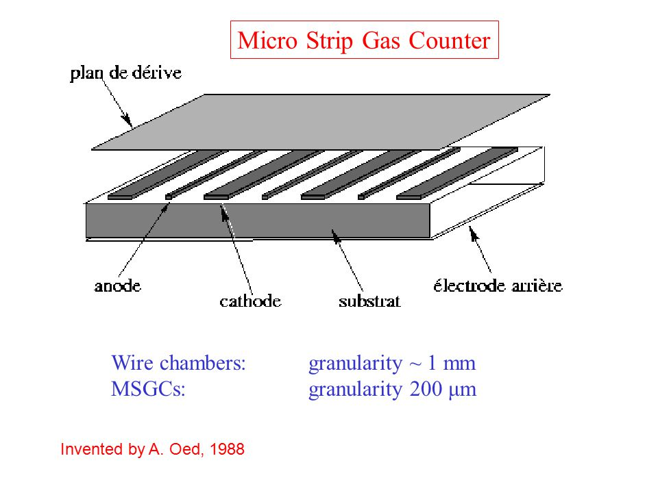 Micro Strip Gas Counter