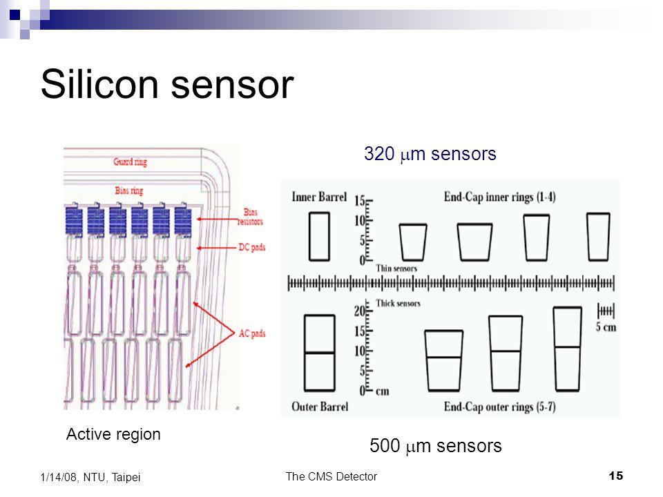 Silicon sensor 320 mm sensors 500 mm sensors Active region