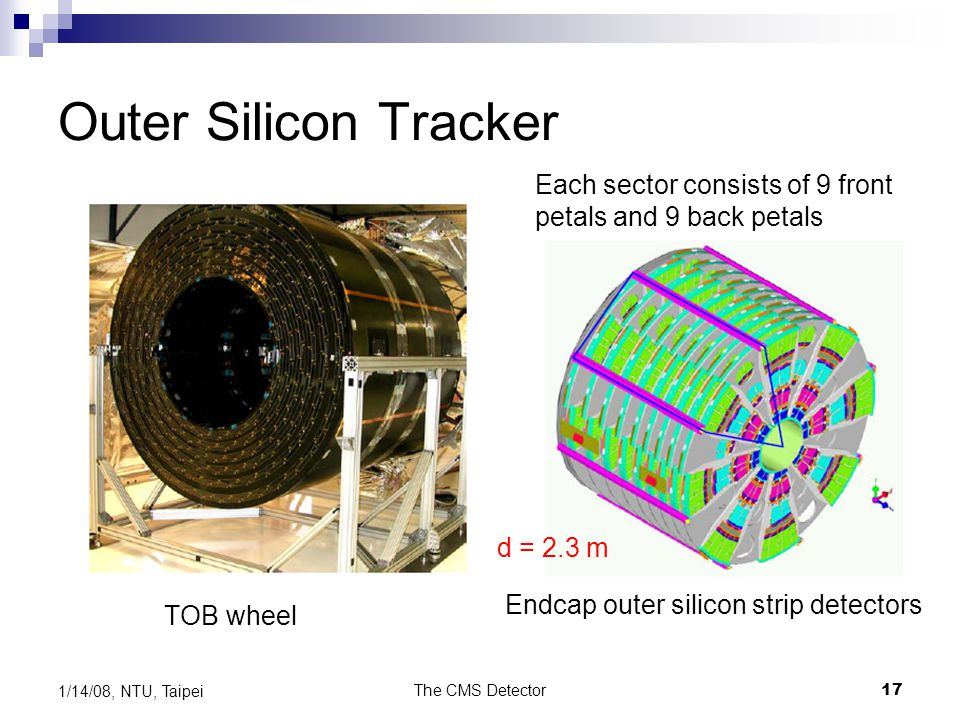 Outer Silicon Tracker Each sector consists of 9 front petals and 9 back petals. d = 2.3 m. Endcap outer silicon strip detectors.