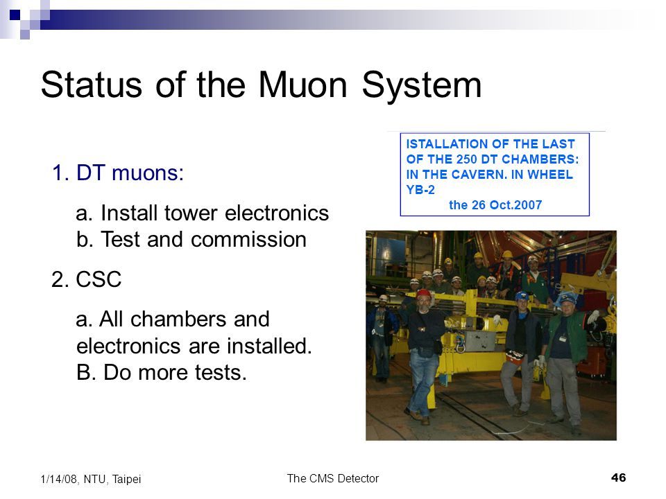 Status of the Muon System