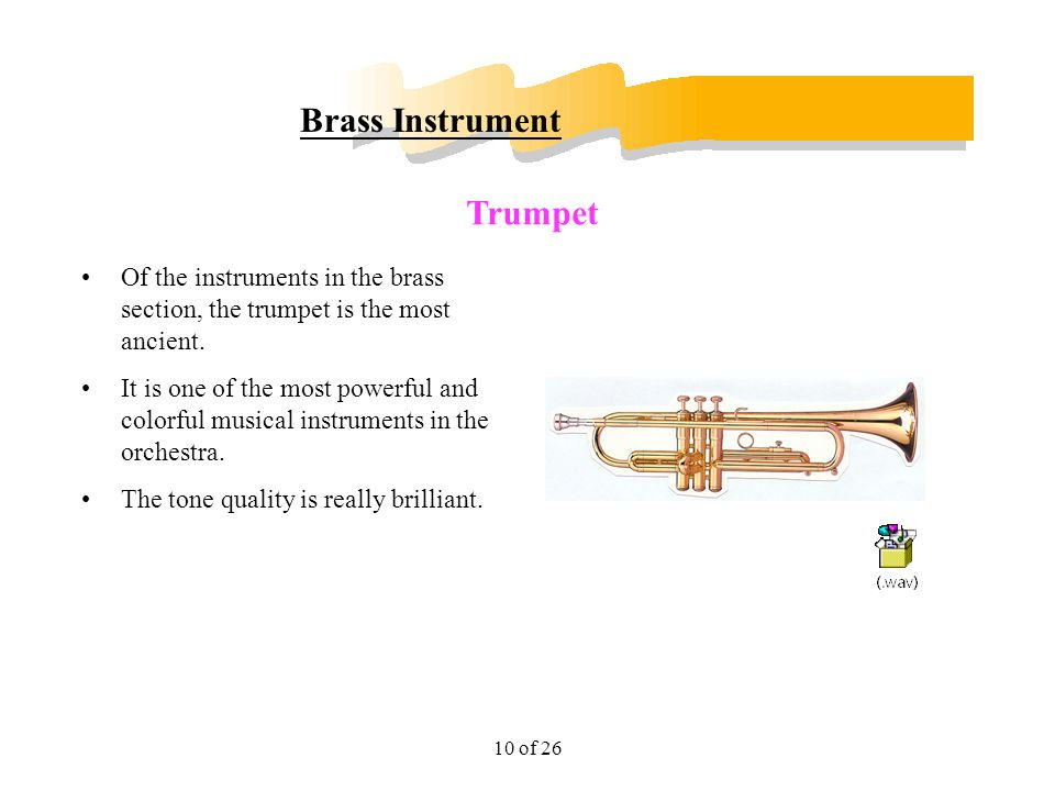 Brass Instrument Trumpet