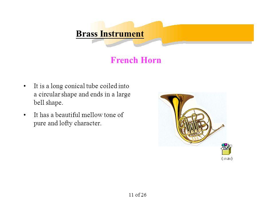 Brass Instrument French Horn
