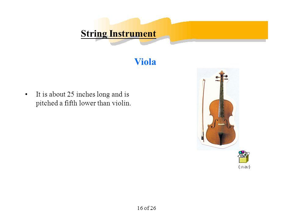 String Instrument Viola