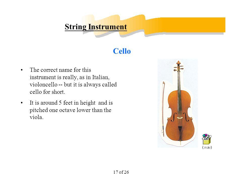 String Instrument Cello