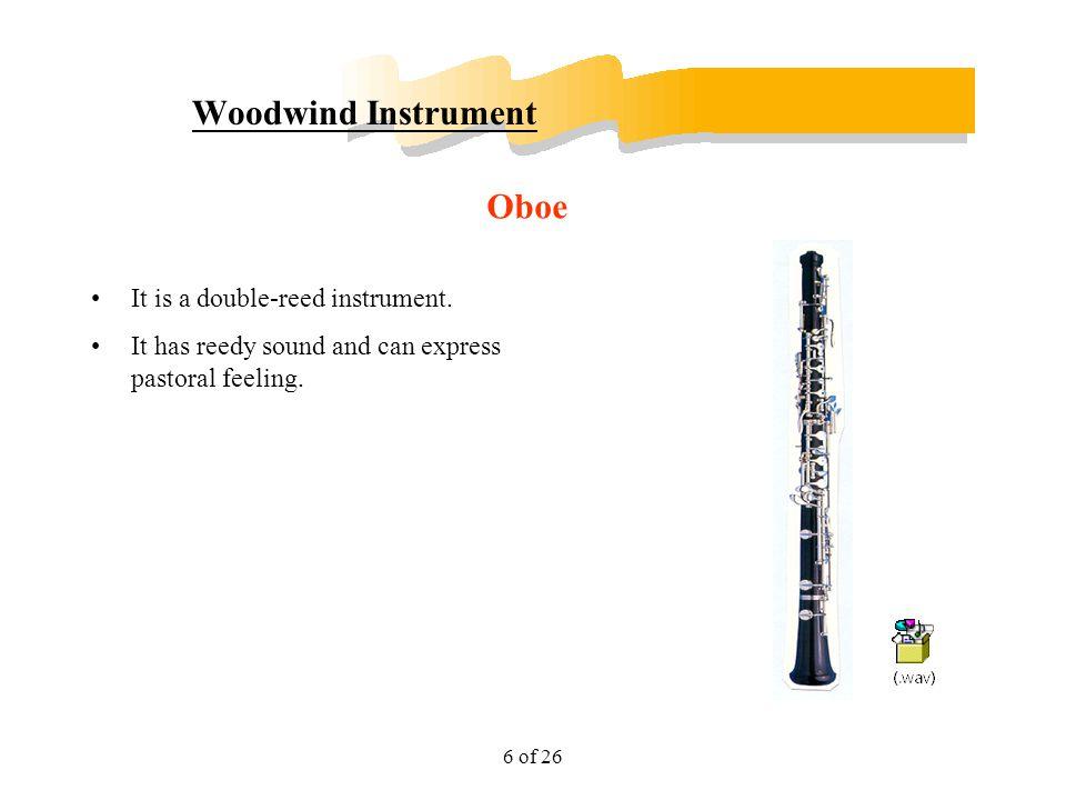 Woodwind Instrument Oboe