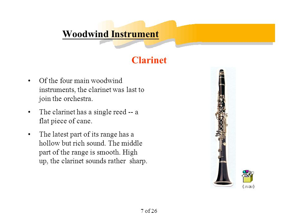 Woodwind Instrument Clarinet