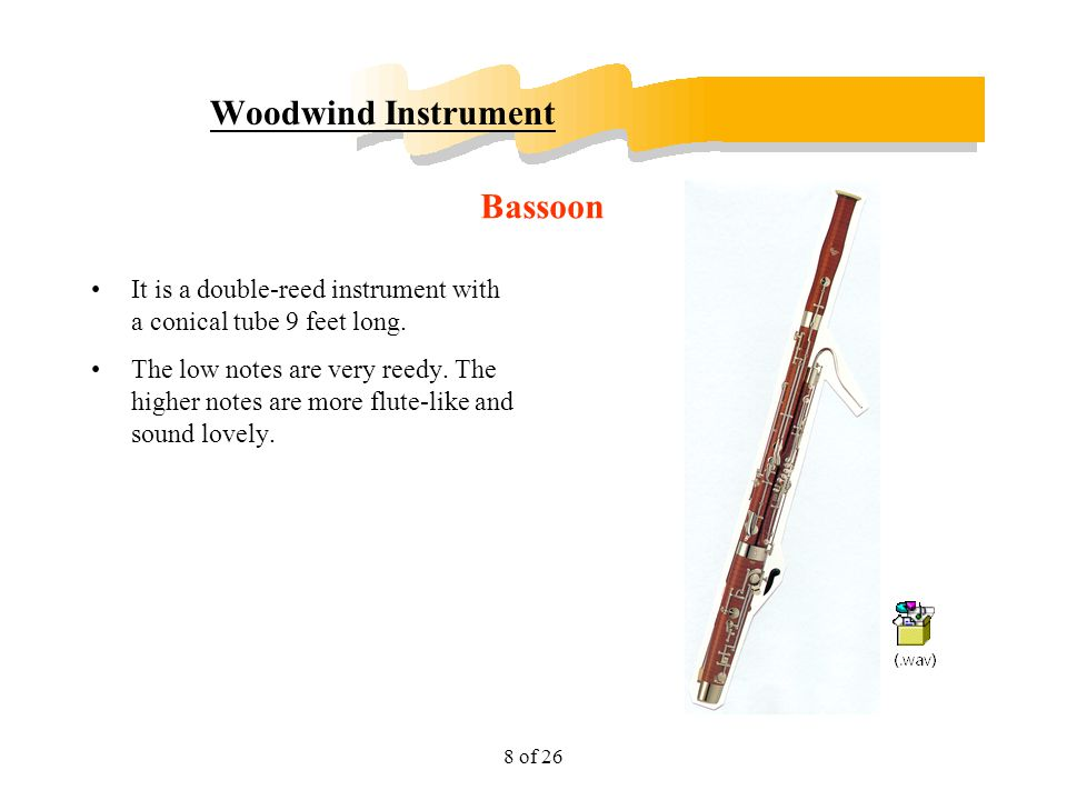 Woodwind Instrument Bassoon