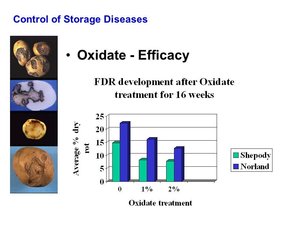 Control of Storage Diseases