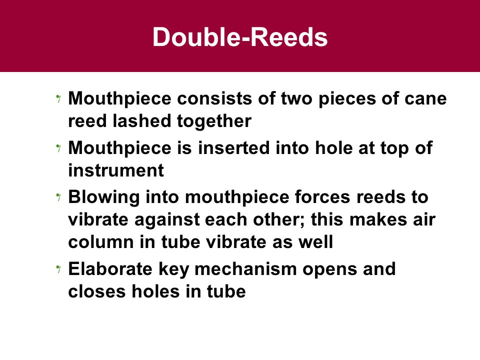 Double-Reeds Mouthpiece consists of two pieces of cane reed lashed together. Mouthpiece is inserted into hole at top of instrument.
