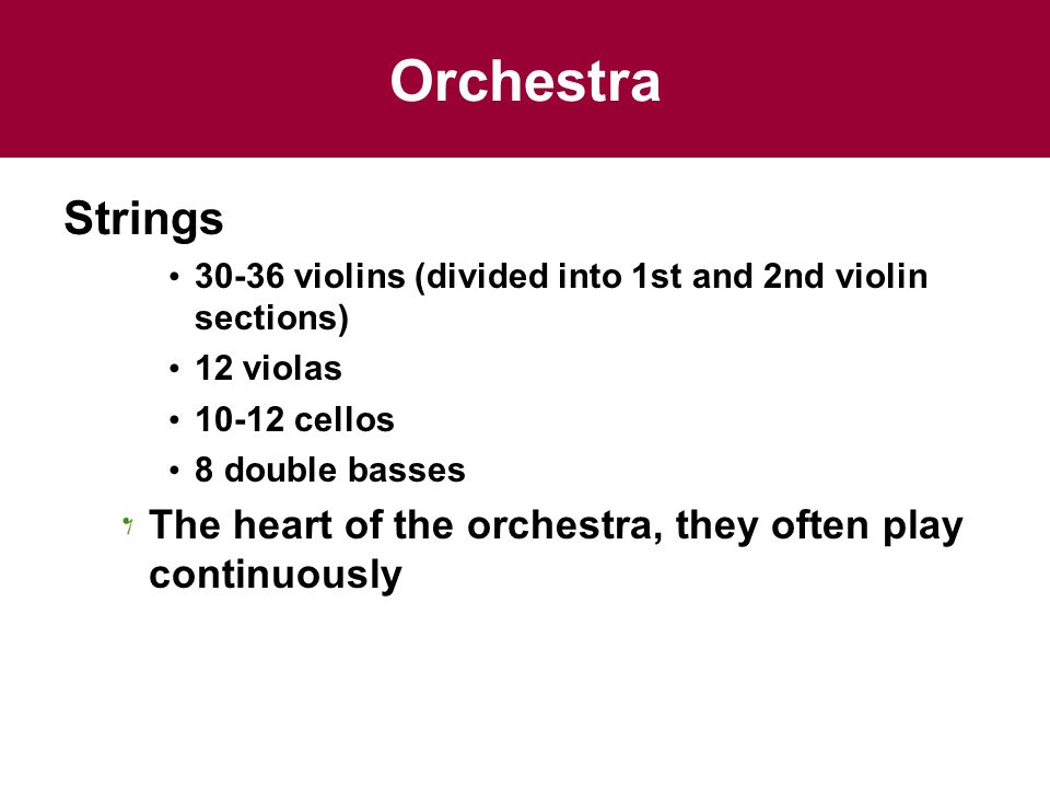 Orchestra Strings. 30-36 violins (divided into 1st and 2nd violin sections) 12 violas. 10-12 cellos.