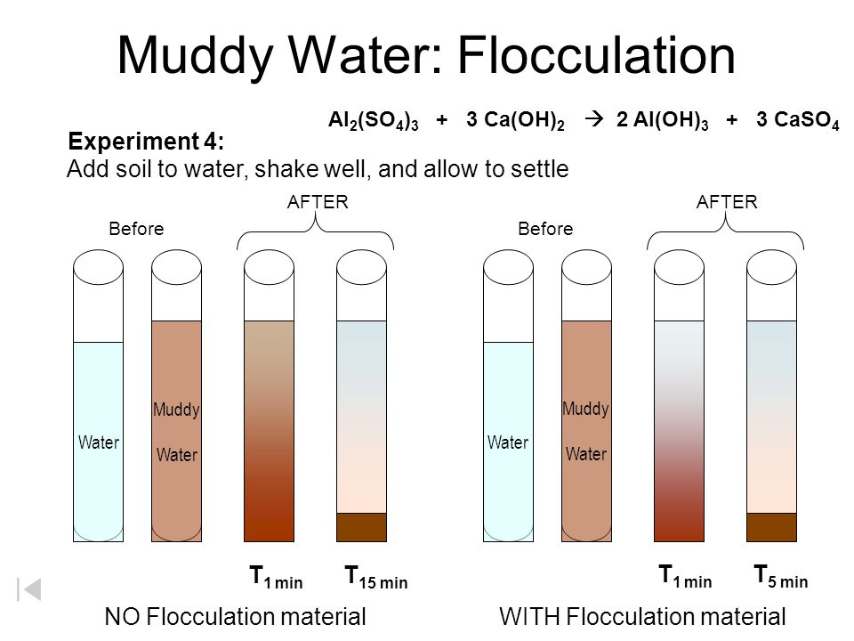 Muddy Water: Flocculation