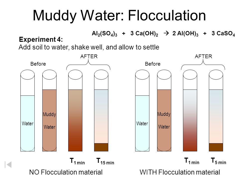 Muddy Water: Flocculation