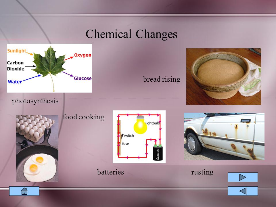 Chemical Changes bread rising photosynthesis food cooking batteries
