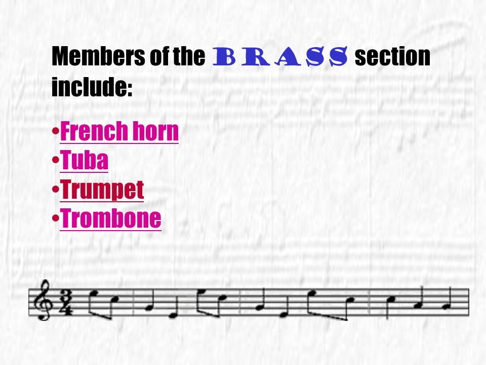 Members of the brass section