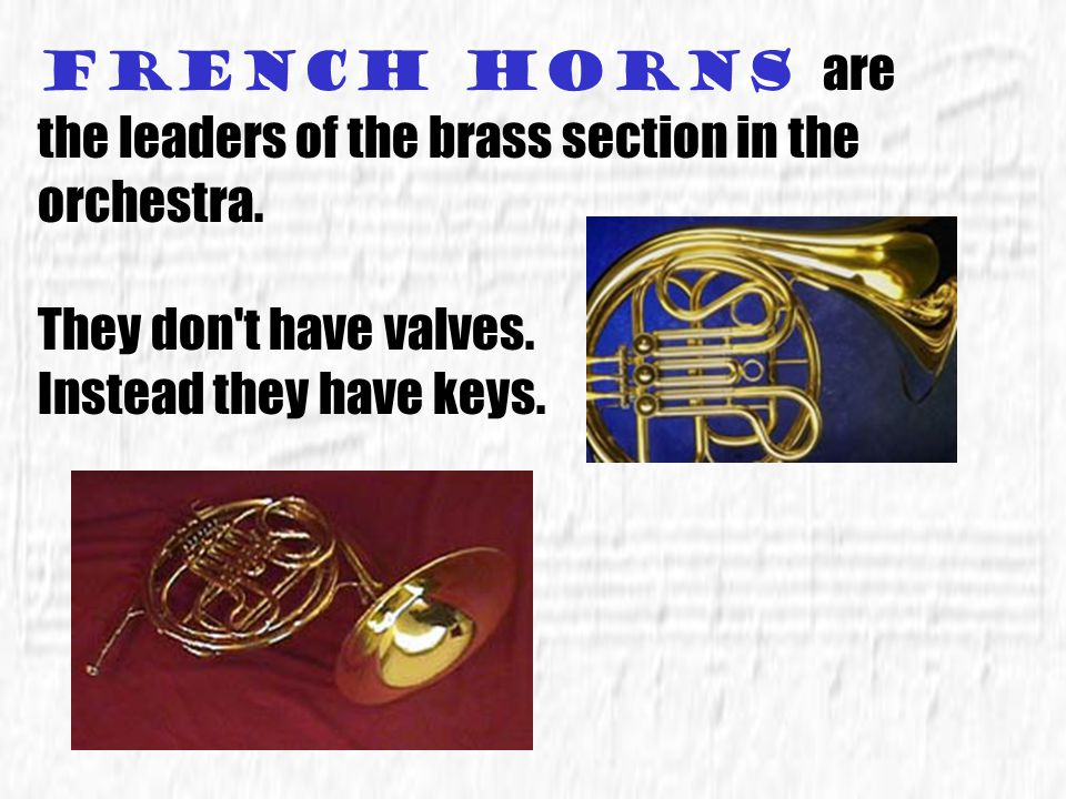 French horns are the leaders of the brass section in the orchestra.