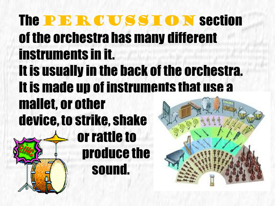 The percussion section of the orchestra has many different instruments in it.