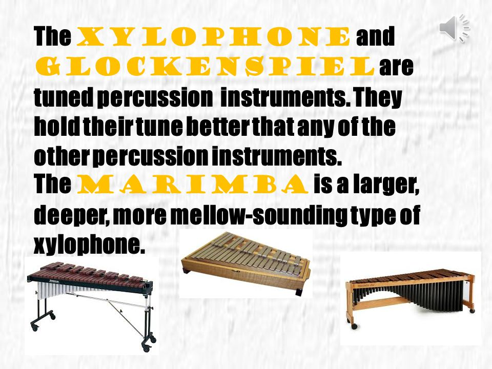 The xylophone and glockenspiel are tuned percussion instruments