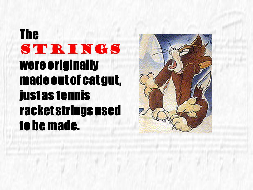 The strings were originally made out of cat gut, just as tennis racket strings used to be made.