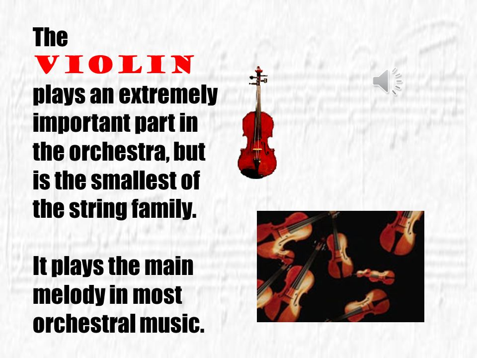The violin plays an extremely important part in the orchestra, but is the smallest of the string family.