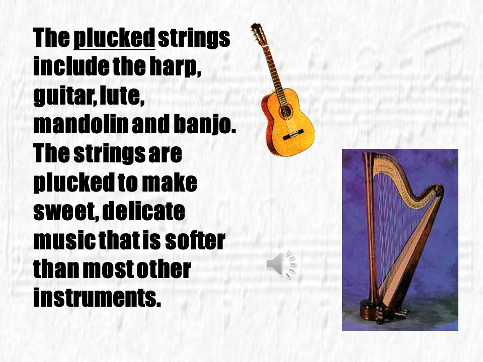 The plucked strings include the harp, guitar, lute, mandolin and banjo