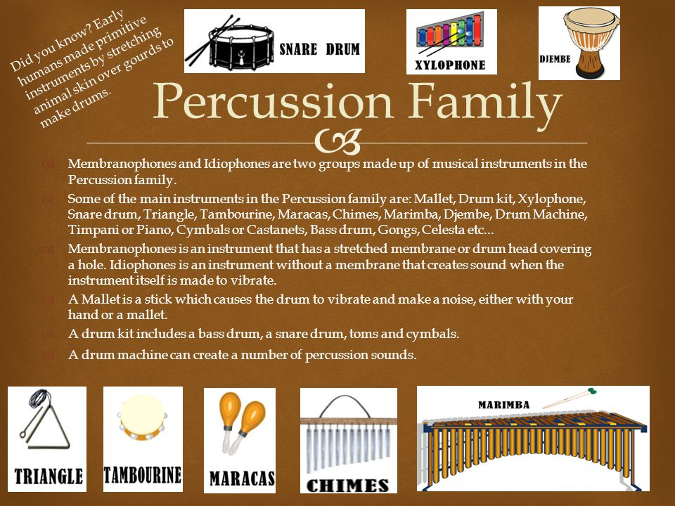 Did you know Early humans made primitive instruments by stretching animal skin over gourds to make drums.