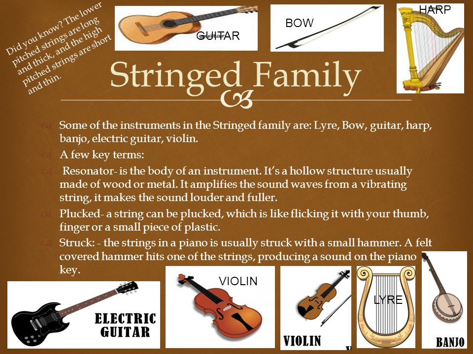 Stringed Family HARP BOW GUITAR VIOLIN LYRE