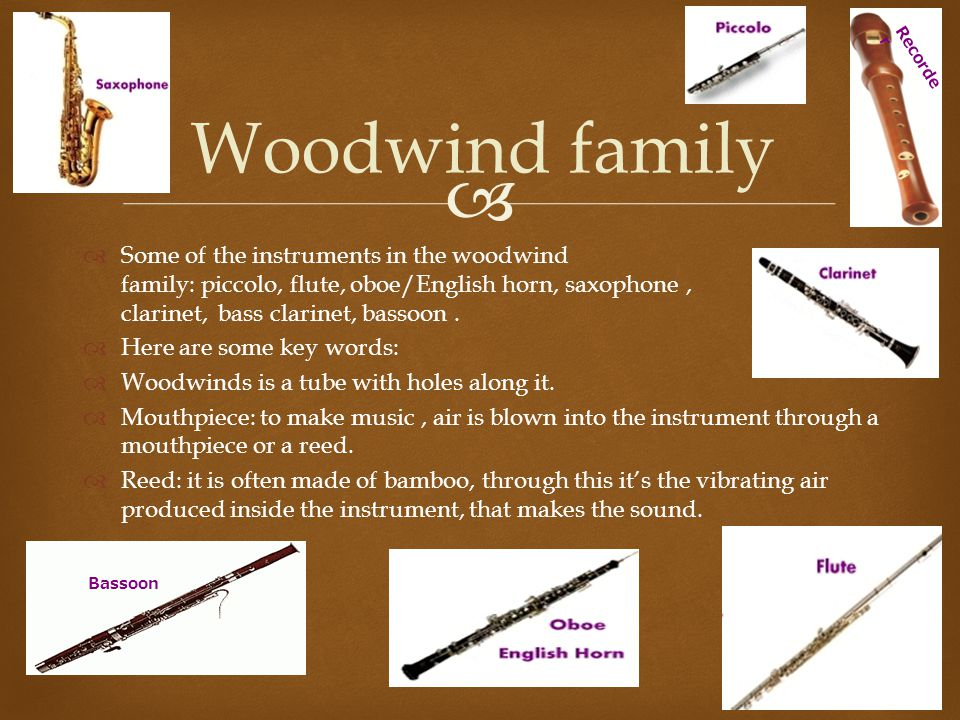 Recorder Woodwind family.