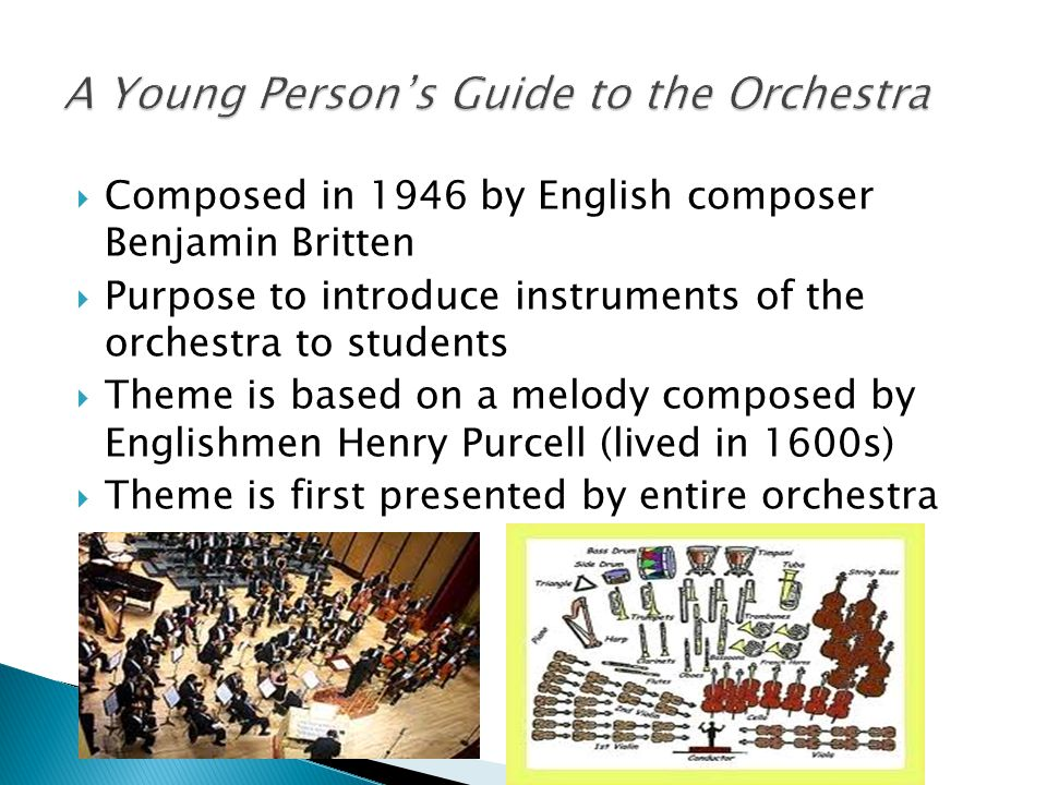 A Young Person's Guide to the Orchestra