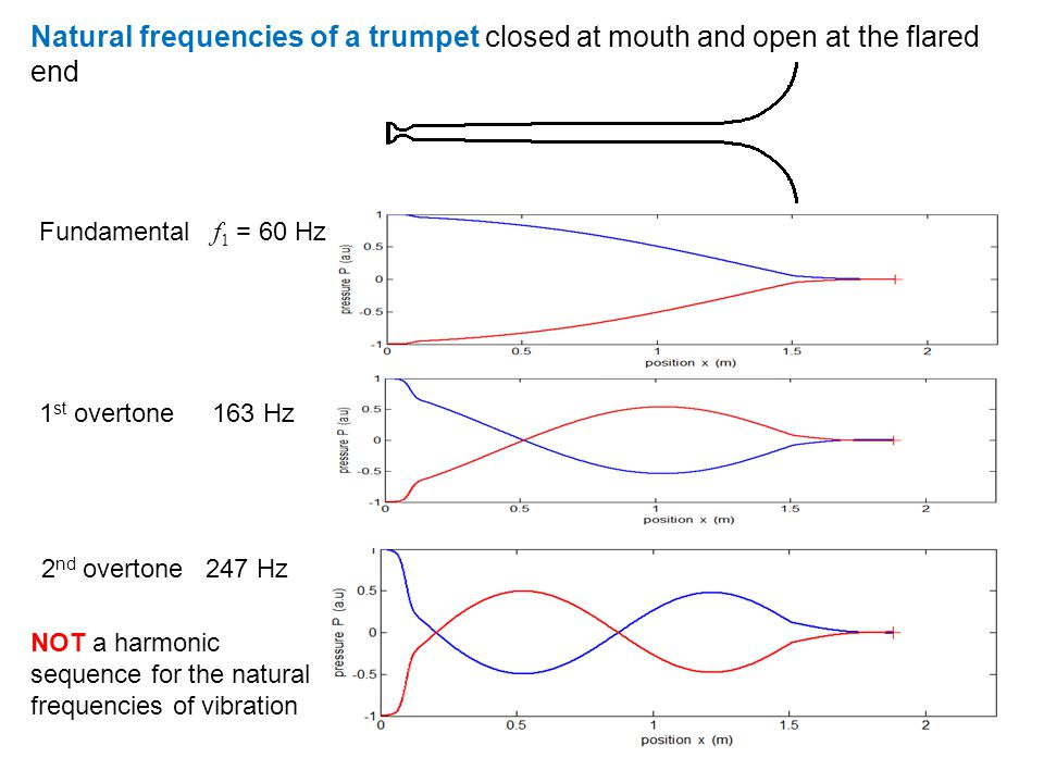 Natural frequencies of a trumpet closed at mouth and open at the flared end