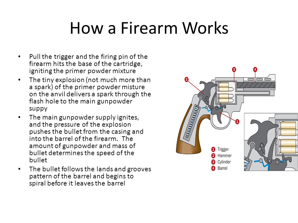 How a Firearm Works Pull the trigger and the firing pin of the firearm hits the base of the cartridge, igniting the primer powder mixture.
