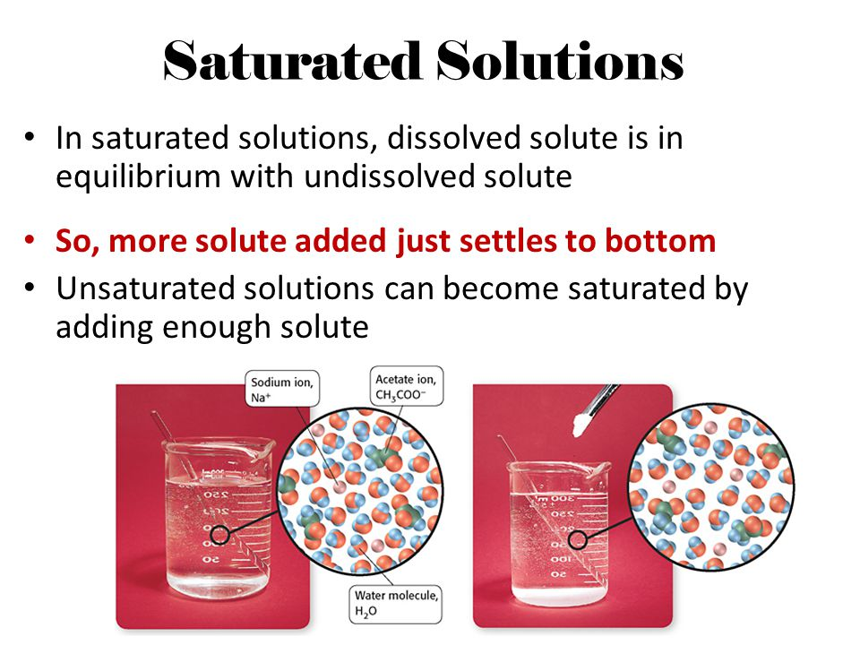 Saturated Solutions In saturated solutions, dissolved solute is in equilibrium with undissolved solute.