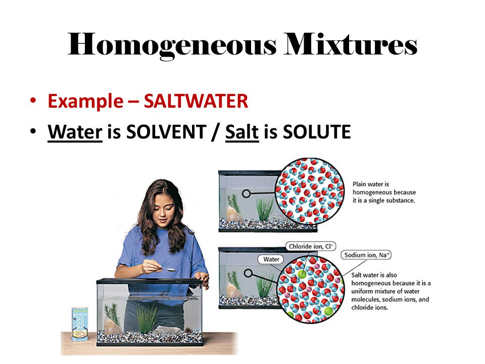 Homogeneous Mixtures Example – SALTWATER