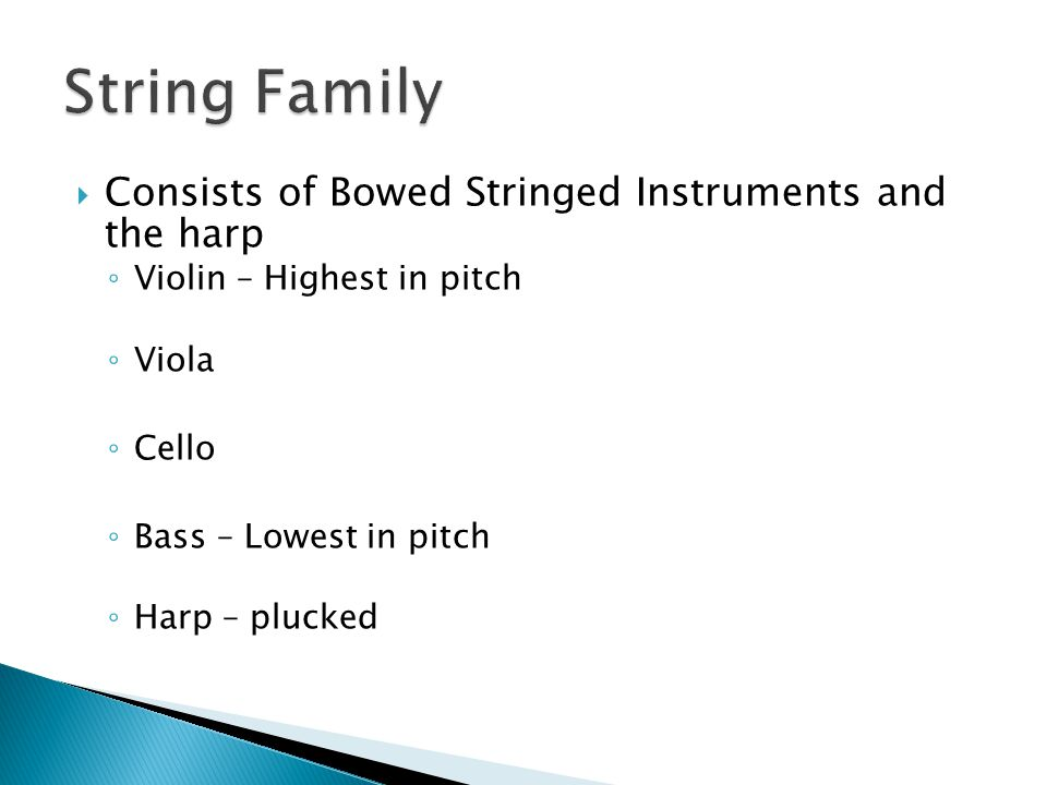String Family Consists of Bowed Stringed Instruments and the harp