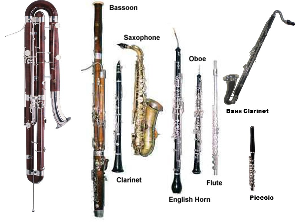 Bass Clarinet Piccolo