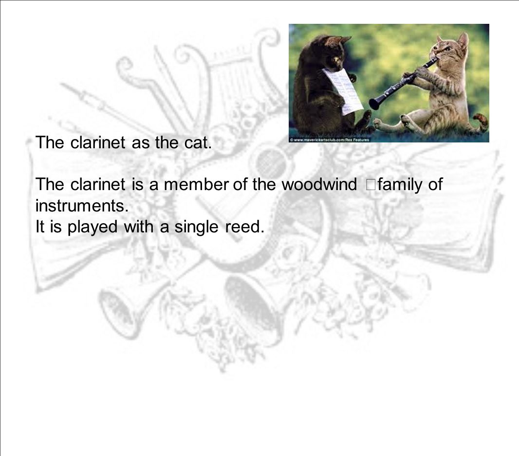 The clarinet as the cat. The clarinet is a member of the woodwind family of instruments.