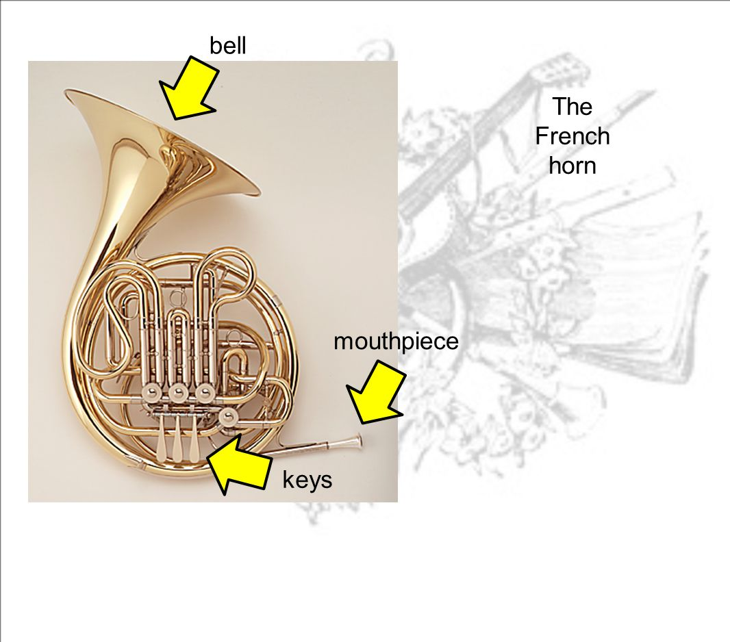 bell The French horn mouthpiece keys