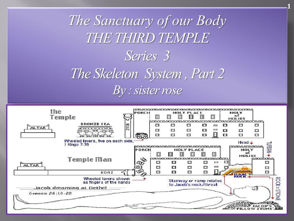 The Sanctuary of our Body THE THIRD TEMPLE Series 3
